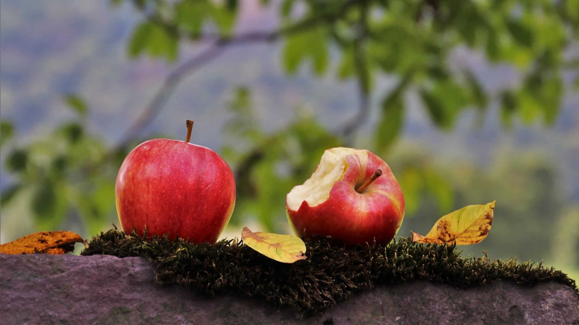 Manzanas y tu salud dental